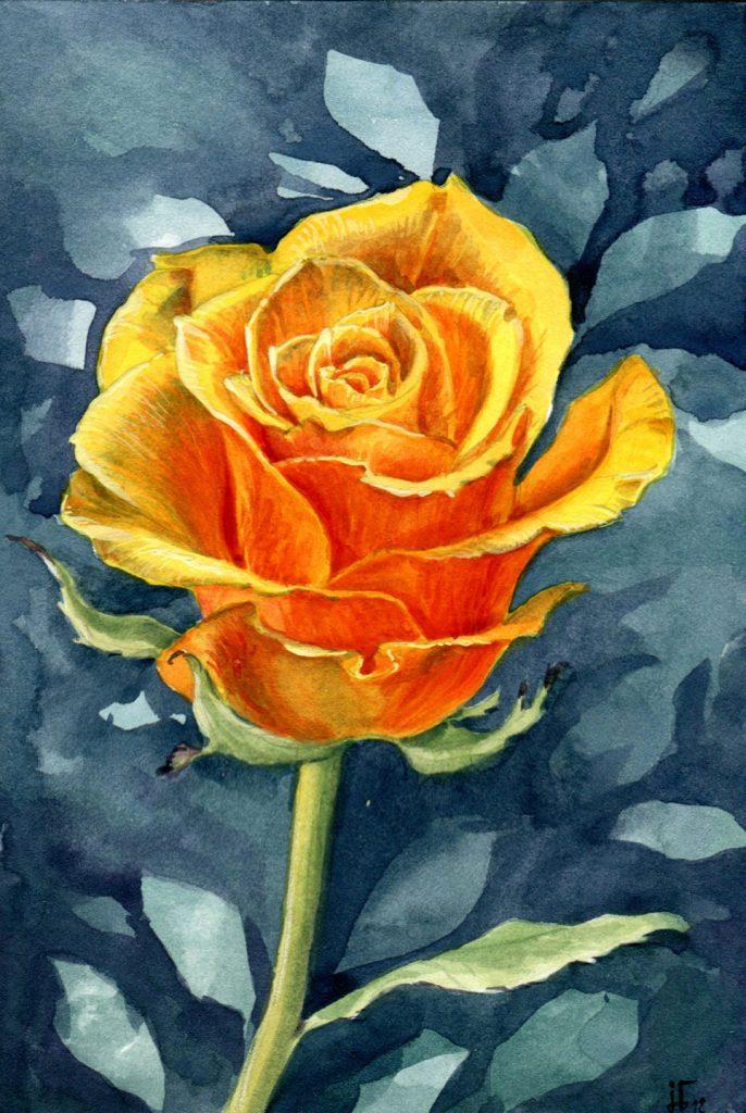 gelbe Rose - Aquarell und Gouache