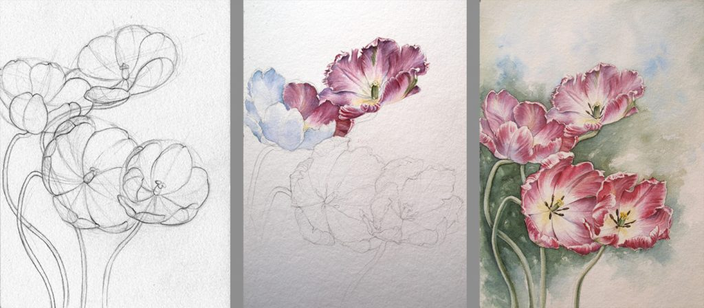 Blumenaquarell, botanische Illustration, Tutorial, step-by-step, Malkurs realistische Blumenmalerei