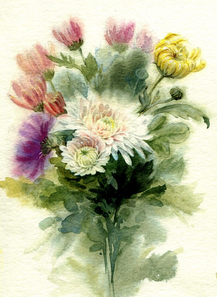 water colour - flower painting - wild chrysanthemum