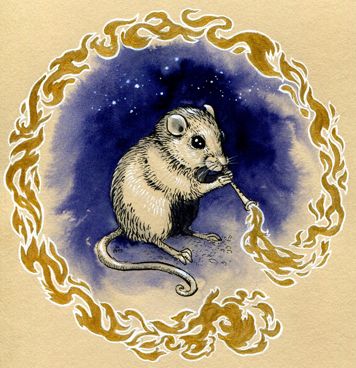 Pacific Pocket Mouse - Inktober 2019 - ink, indigo drawing ink, white gouache and golden acrylic