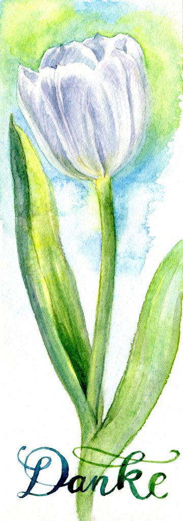 white tulip - water color - Say thank you and stay at home.