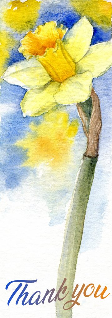 daffodill - water color - Say thank you and stay at home.