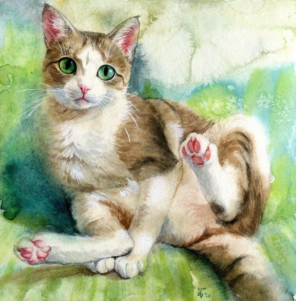 water colour - illustration - cat - favorite pet