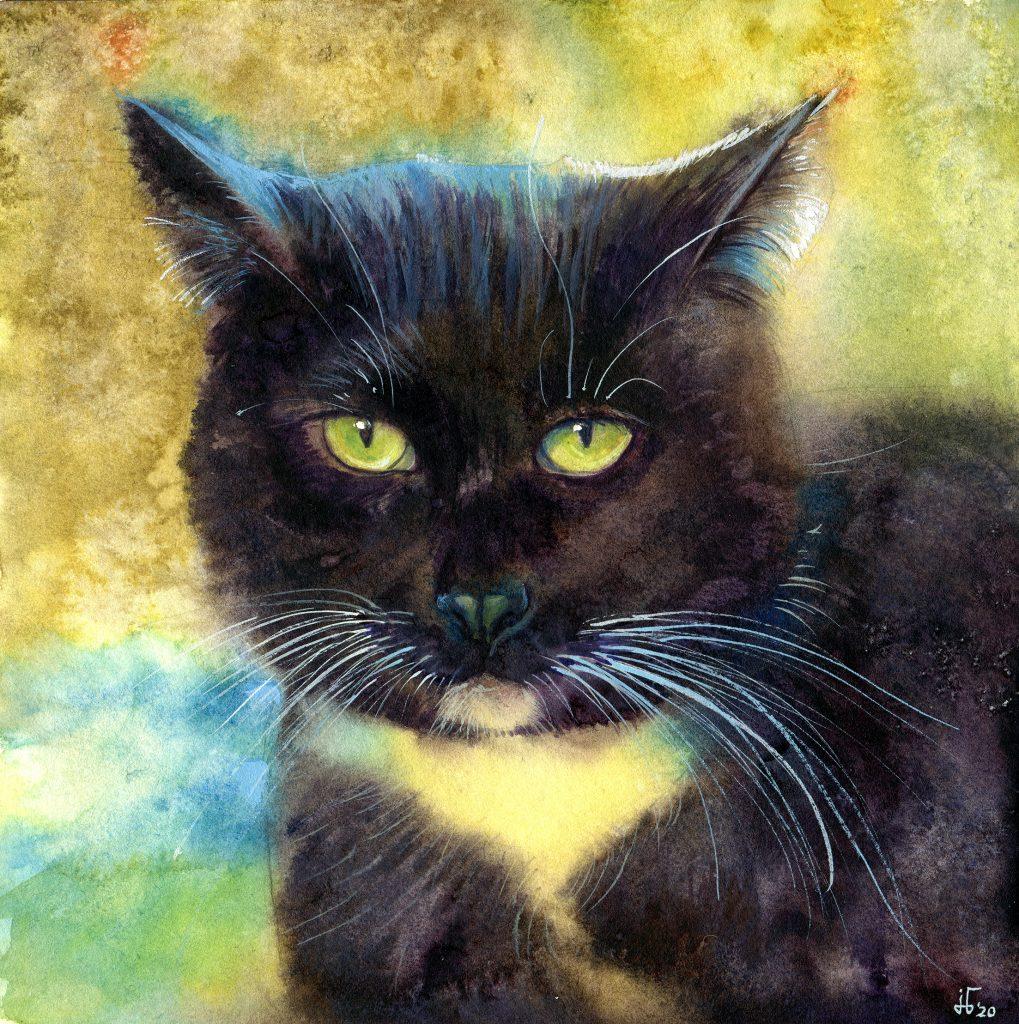 Aquarell - Illustration - Katze - Lieblingstier - schwarze Katze - Tierportrait