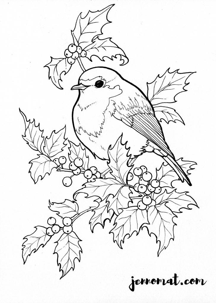 colouring picture robin