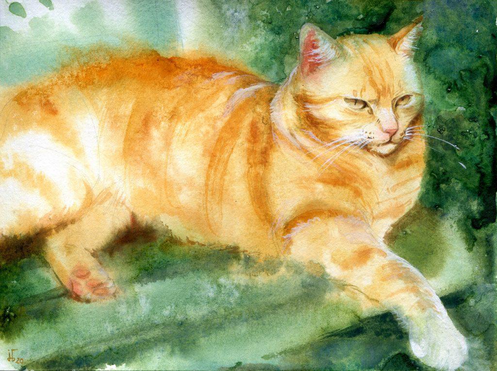 Aquarell - Illustration - Katze - Lieblingstier - Tierportrait - rote Katze - Tierskizze