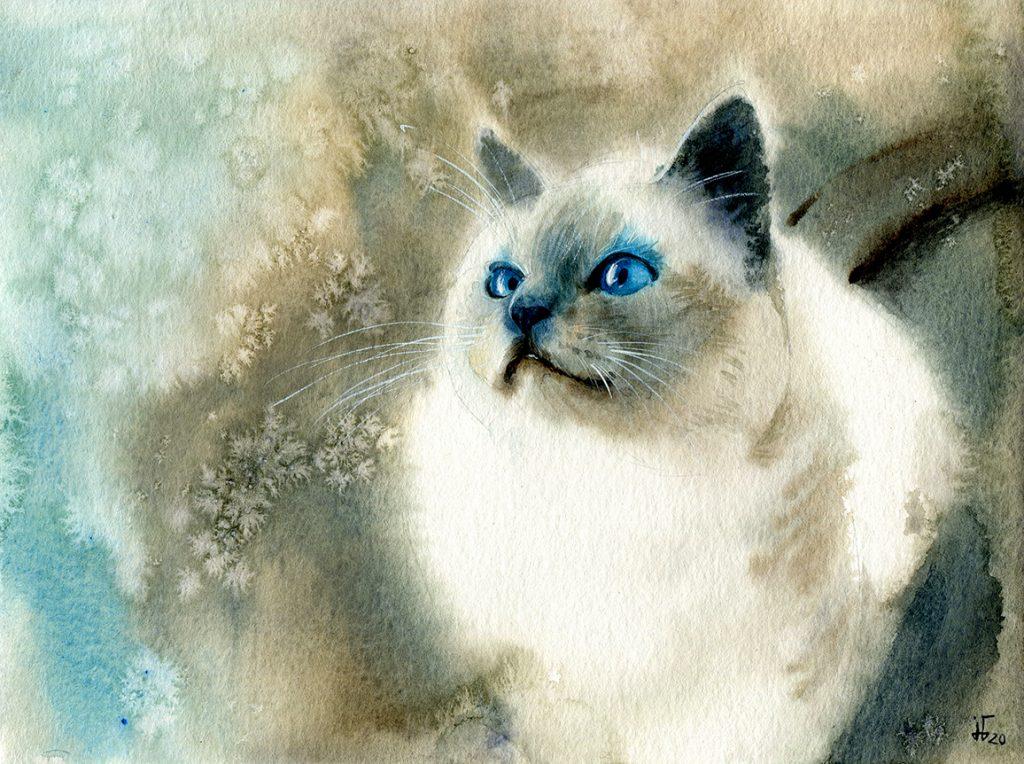 Aquarell - Illustration - Katze - Lieblingstier - Tierportrait - weiße Katze - Tierskizze