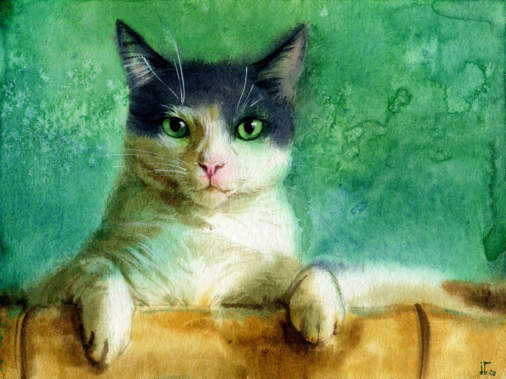 Aquarell - Illustration - Katze - Lieblingstier - Tierportrait - schwarz-weiße Katze - Tierskizze