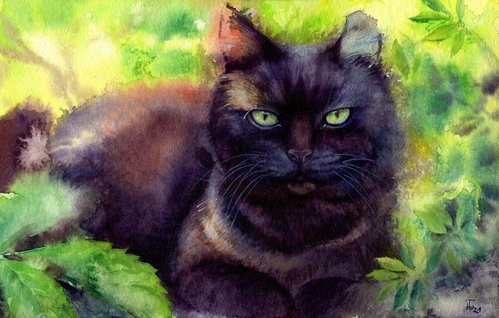 water colour - illustration - black cat - favorite pet - pet portrait
